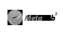 metalab2